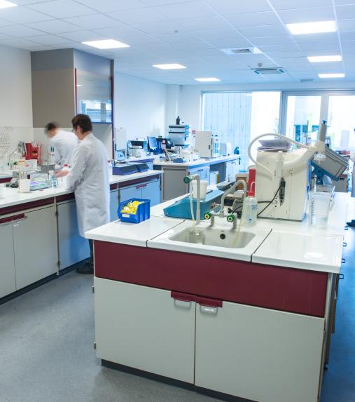 laboratorio_camoco-img